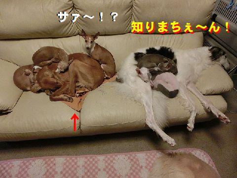 c_20141230011051c87.jpg