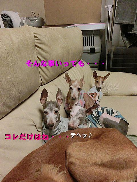 c_20150125230551811.jpg