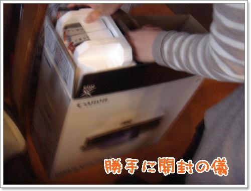 DSC03330.jpg