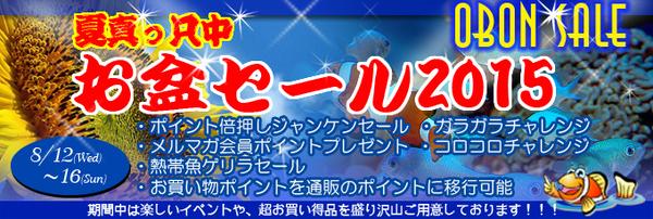 banner_obonsale-a843c-thumbnail2[1]