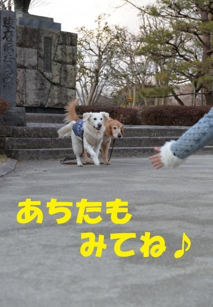 ☆すんぷ10