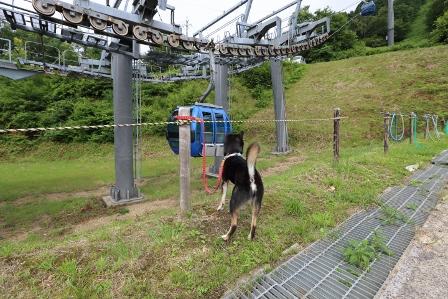 箱館山ゆり園ゴンドラ4