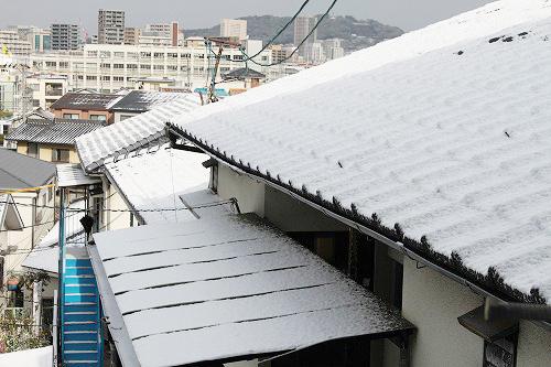 雪降ってた