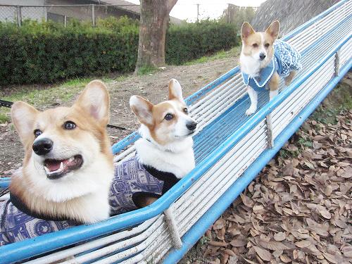 滑り台で3ワンショット☆