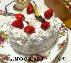 chiristmas-cakes2.jpg