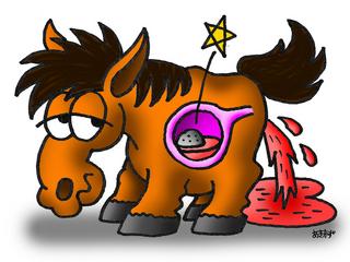 20150815_Blog2_Cystolithiasis_Pict1.jpg