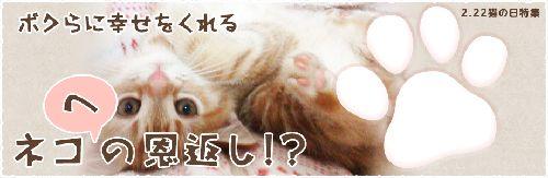 nya_main20150222.jpg