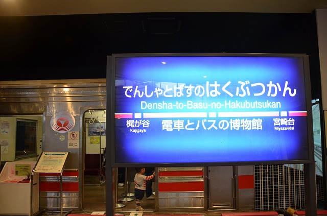 DSC_009721.jpg