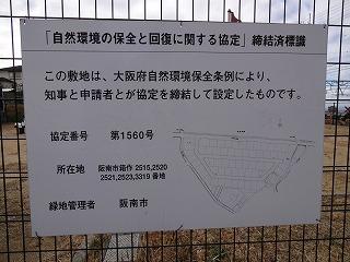 ロハシス箱の浦02