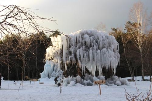 樹氷祭り3