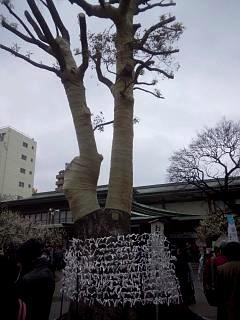 20150308湯島天神(その9)