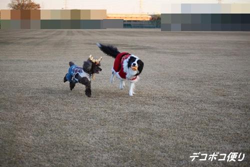 20141224 メリークリスマスライト4