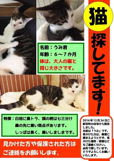 【ブログ用】海くんチラシ3-01