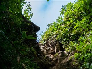 2015-8-10谷川岳17 (1 - 1DSC_0025)_R