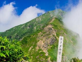 2015-8-10谷川岳26 (1 - 1DSC_0050)_R