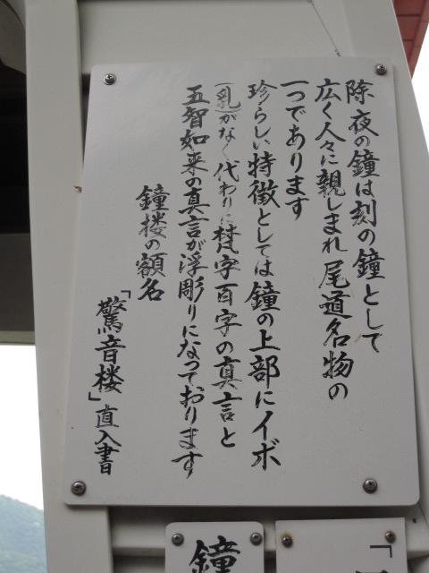 IMG_3492.jpg
