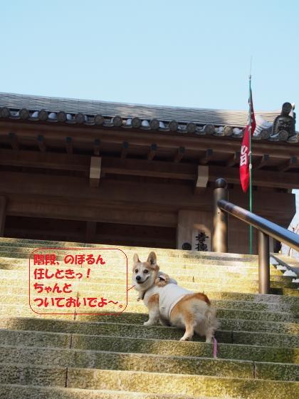天上寺へgo