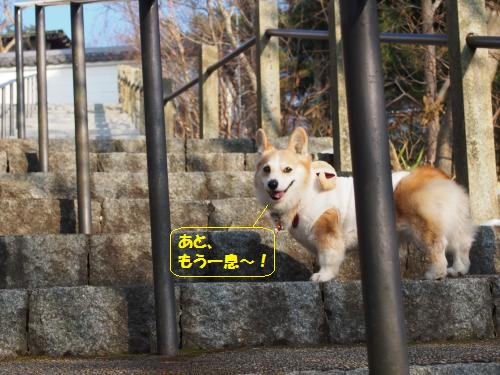階段もーちょい