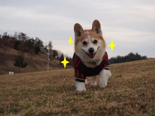 笑顔きらっきら☆