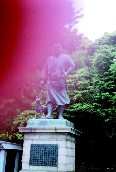 Gifu-light blessing