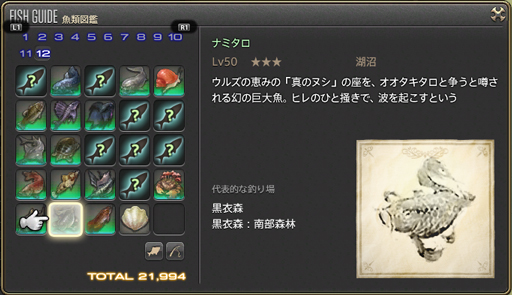 魚類図鑑(ナミタロ)