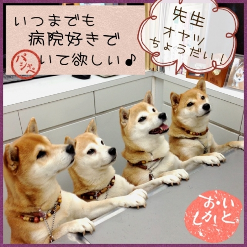 image_7_20150123103850eeb.jpg