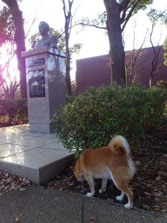15-01-28-01上野公園