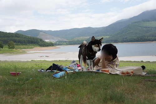 かなやま湖⑤