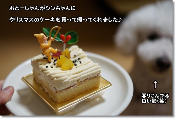 ボクのケーキ1