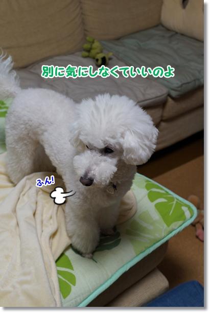 うわっ!(・o・ノ)ノ3