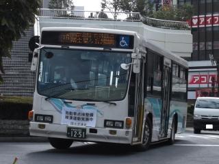 DSCF3451.jpg
