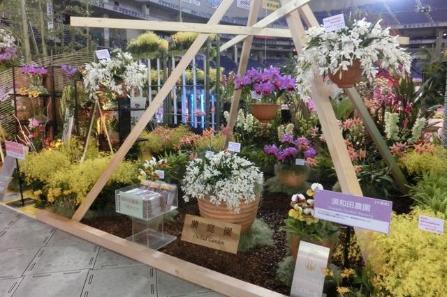 須和田農園 蘭庭園(トロフィー賞)