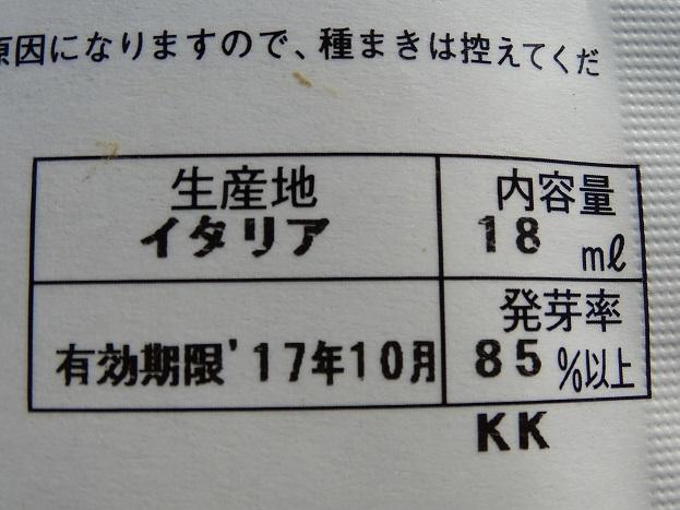 2017-02-13葉ダイコン (2)