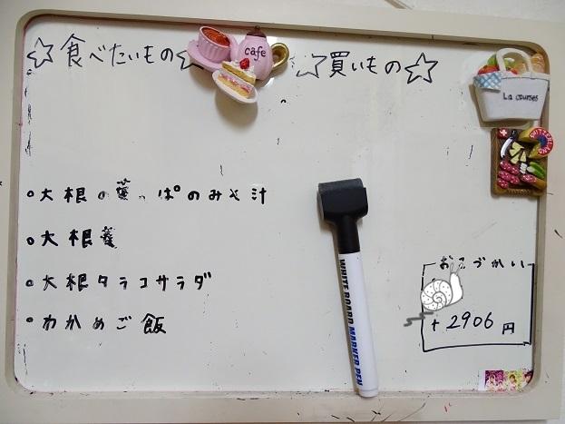 2017-02-24葉ダイコン (9)