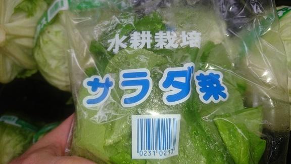 サラダ菜価格 (1)