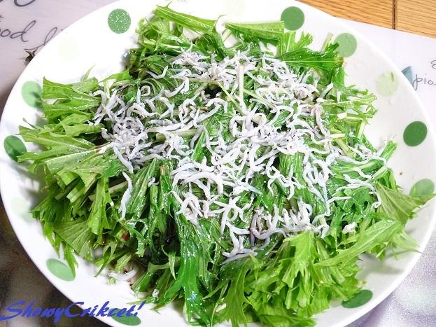 2017-04-28水菜サラダ (10)