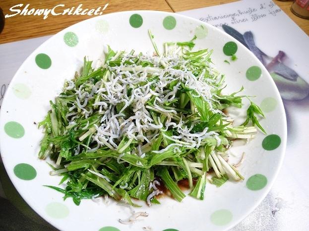 2017-04-28水菜サラダ (11)