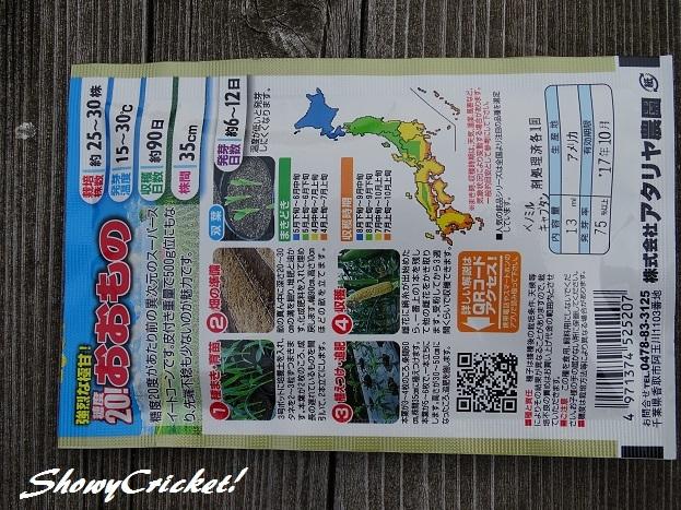 2017-05-31トウモロコシ (7)