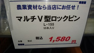 DSC_1255.jpg