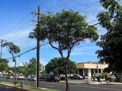 冬の朝Kailuaへ向かう道は静かdownsize