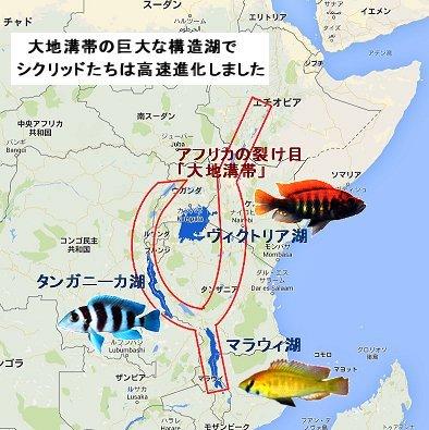 東アフリカ大地溝帯の構造湖REVdownsize