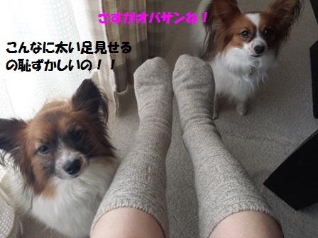 20150131_162124.jpg