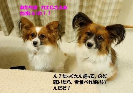 _MG_3180.jpg