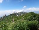 イブキトラノオと門内岳