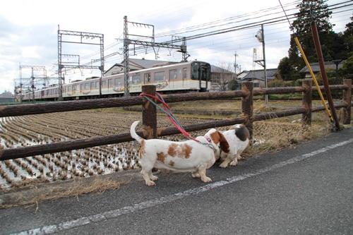西ノ京00002