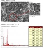 津波堆積物分析1