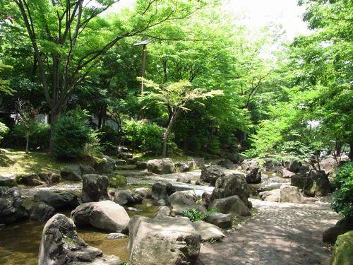 大横川親水公園緑道4
