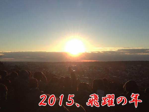 2015、飛躍の年