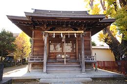 141127押切稲荷神社銀杏⑥