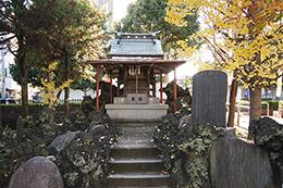 141127押切稲荷神社銀杏⑧